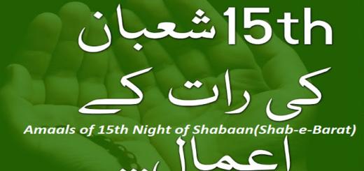 Amal15Shabaan